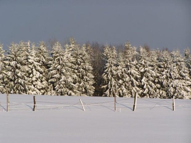 Photo of Vorsicht bei Schnee und Eis: Was Autofahrer jetzt beachten sollten