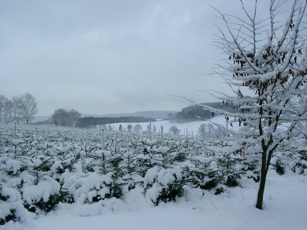 Photo of Motorenöl: Auch im Winter Füllstand regelmäßig checken