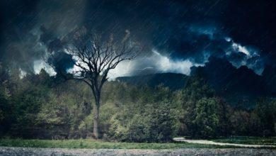 Photo of Gewitter – Sicherheit auf der Straße auch bei Blitzen